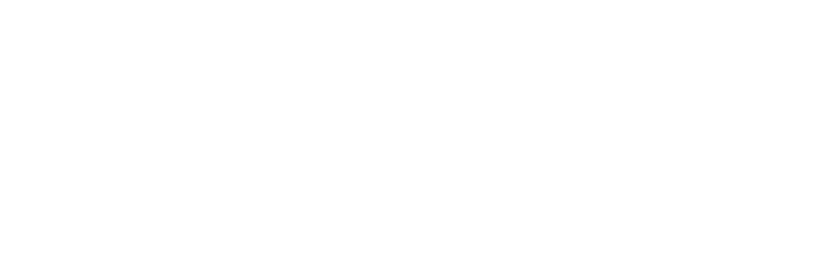 The American Company of Irish Dance